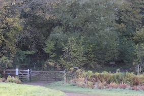 Through the gate into the nature reserve. Dogs on leads now please