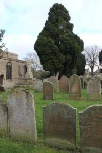 Really lovely churchyard