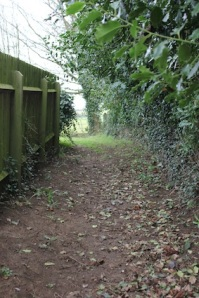 Carry along the narrow alley towards the stile