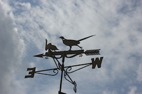 Great weathervane