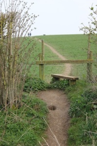 Over the stile & the path's very clear
