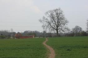 & towards the old farm buildings