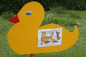Great advert for the local duck race