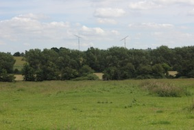 Our route across the first field's straight ahead towards the windmills in the far distance