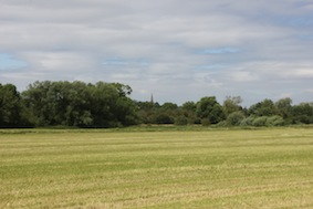 There's Sharnbrook Church