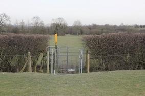 The last field