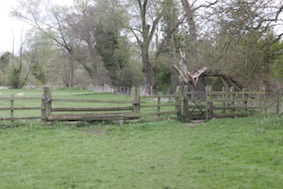 Pass through the gate into the second field