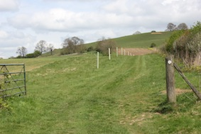 The summit of Honey Hill's away to the right