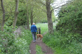 This area's popular with dog walkers